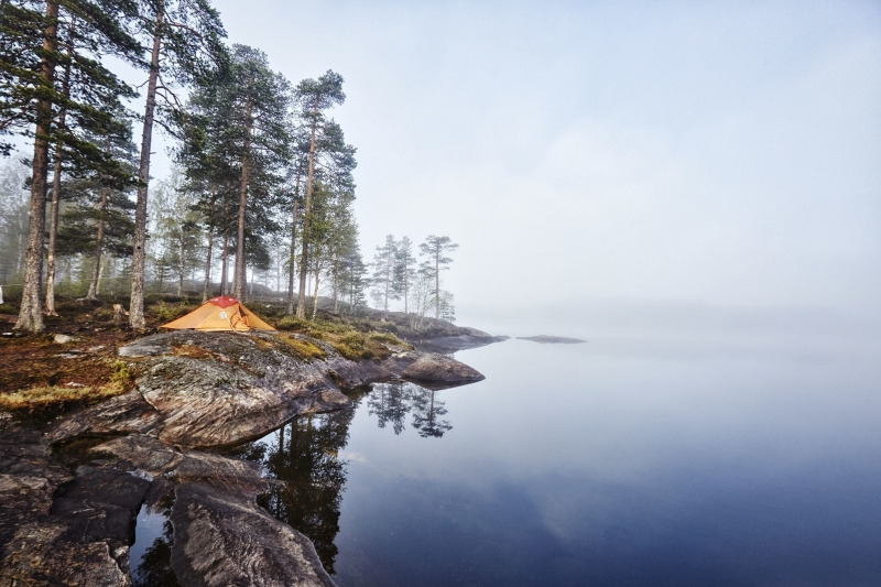 Tent perched ontop of a rock under a group of pine trees next to a lake in Norway