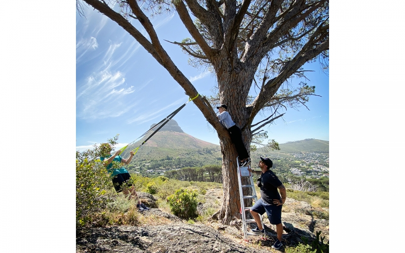 Jessica Zumpfe climbing into a tree on a photoshoot in Cape Town